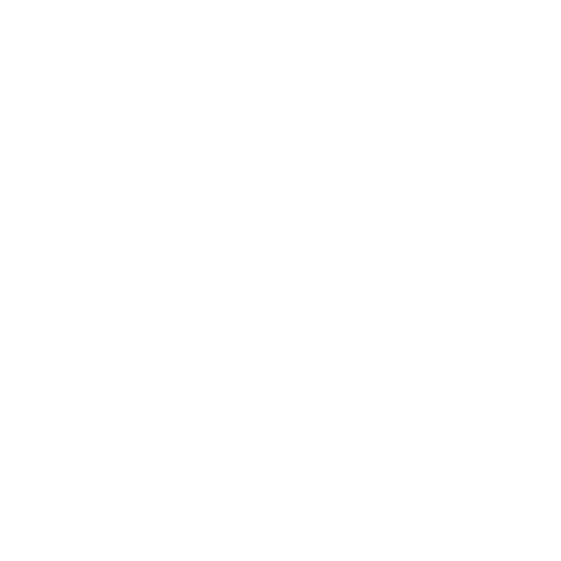 025-budget-copy